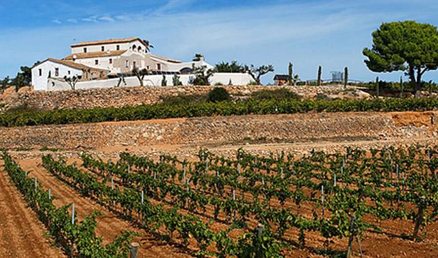 Mas Llagostera; en La Bisbal del Penedés, Tarragona.