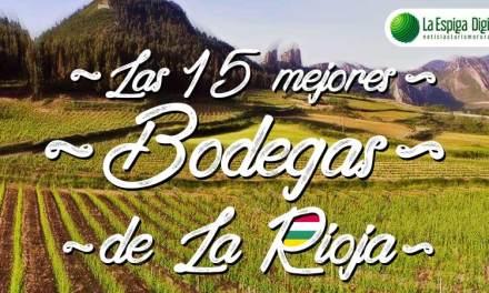 Las 15 mejores Bodegas en La Rioja