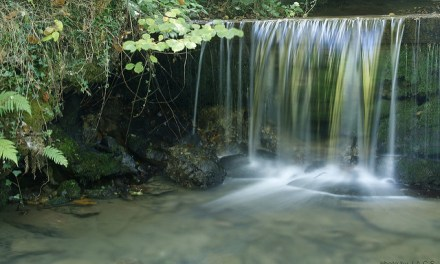 Asturias, la comunidad con mayor tasa de ocupación