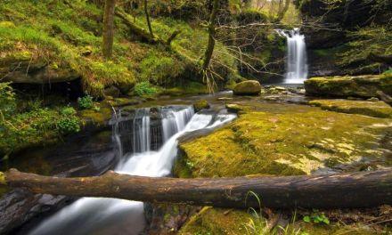 Nuevas ofertas para mejorar el turismo rural