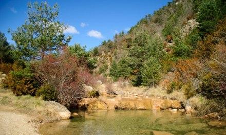 Rutas Botánicas en Aragón