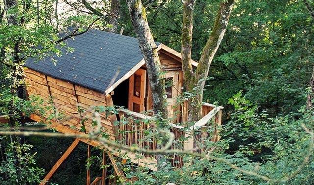 Las Mejores Cabañas En Los árboles Para Dormir En España La Espiga Digital