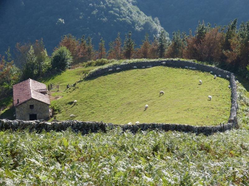 El número de viajeros de turismo rural desciende un 2,43% en enero