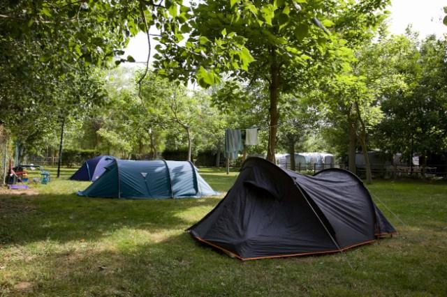 Los 15 Mejores Campings De Navarra La Espiga Digital
