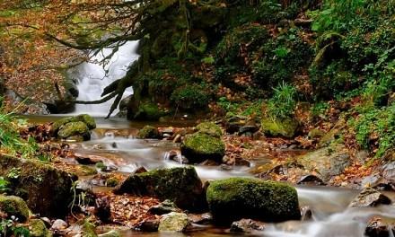 Buen noviembre para el turismo rural en Saja-Besaya