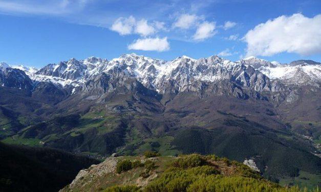 Un nuevo plan ambiental permite controles de la fauna en los Picos de Europa
