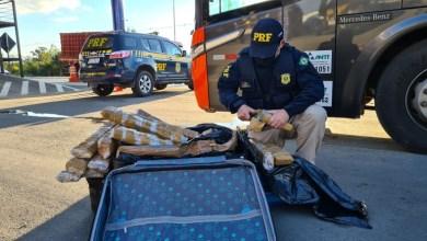 Photo of Passageiros são flagrados com bagagens recheadas de droga em Conquista