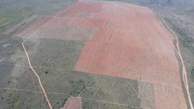 Photo of Inema e fazendeiro são processados por desmatamento ilegal em fazenda do agronegócio na Chapada