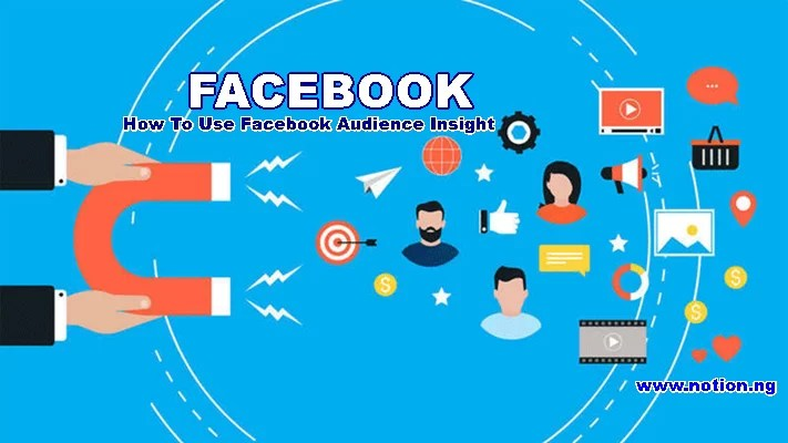 How To Use Facebook Audience Insight – Facebook Insights Audience | Facebook  Insights Tool - Notion.ng