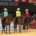 Un Exito la 32da Edición de la Feria del Campo Puertorriqueño