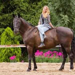 2 hodiny ve světě koní