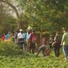 Lomas de Lúcumo: Apertura de temporada 2016