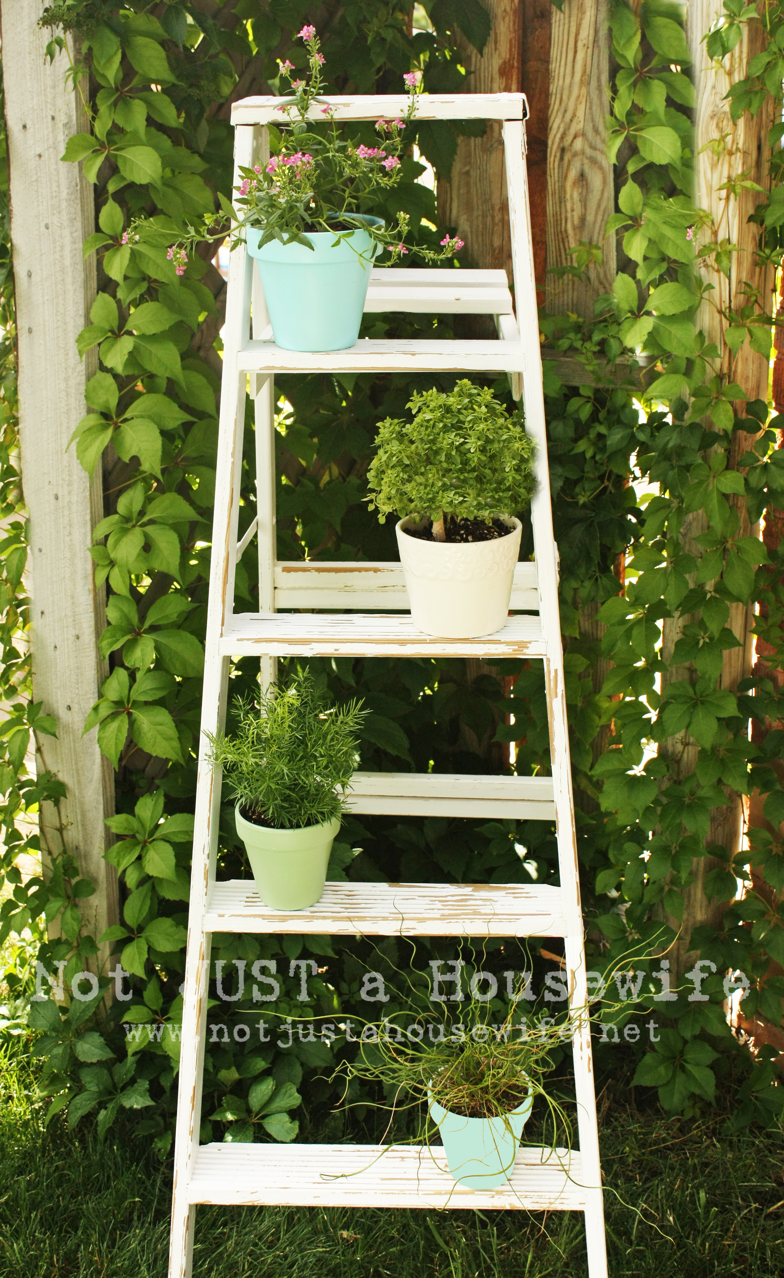 Outdoor Decor - Stacy Risenmay on Hanging Plant Stand Ideas  id=43601