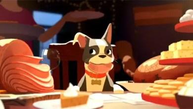 Photo of Feast :Cortometaje de Animación de Disney