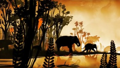 Photo of Cortometraje de Animación: Elephants Are Wildlife