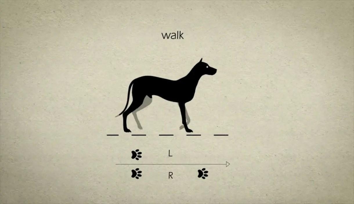 Tutorial de Animación de Caminatas 2D