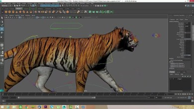 Photo of Tutorial: Como animar una caminata de un Tigre
