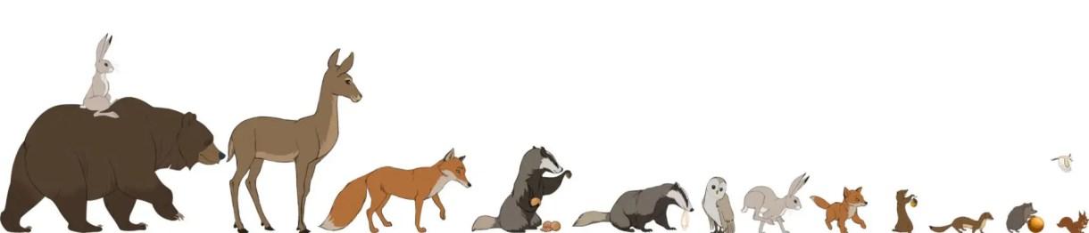 Spot / Cortometraje de Animación & Making of. The Bear & The Hare