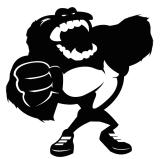 Gorillas Riot - Partenariats Not Only Hip Hop