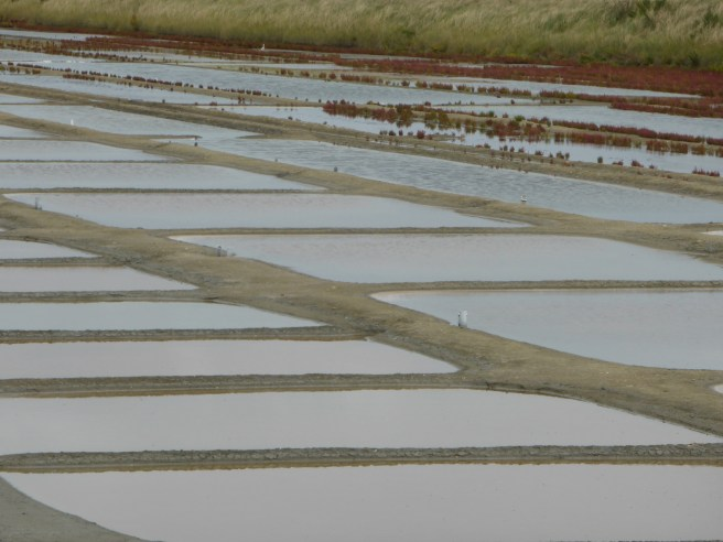 Marais salant sous l'eau - 27 août