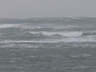 Mer sauvage - 27 octobre