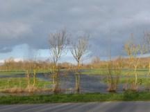 P1060653 -Marre de la pluie