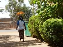 Ouagadougou - Vendeuse d'oranges