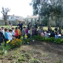 Initiation au compostage - Ecole d'Ars-en-Ré