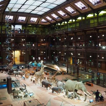 Grande Galerie de l'Evolution
