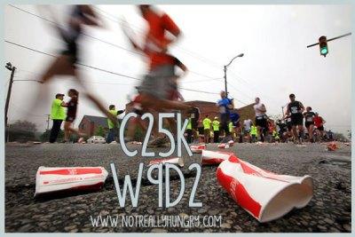 C25K W9D2