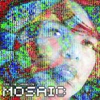 Terri Lynne Carrington: The Mosaic Project