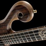 Xylem 5-String Black Limba Bass