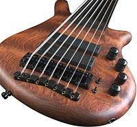 Jeroen Paul Thesseling's Warwick Thumb NT 7 Fretless Bass