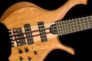Bass of the Week: Laurus T900-XR