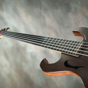 Bass of the Week: Brown's Guitar Factory Fretted/Less Bass