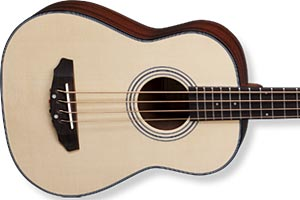 Michael Kelly Introduces Sojourn 4 Acoustic Travel Bass