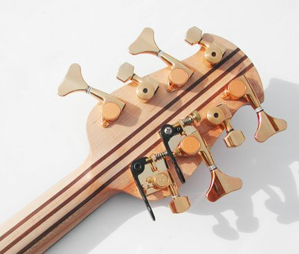 Surine Regency 8-string Rainbow Bass Headstock back