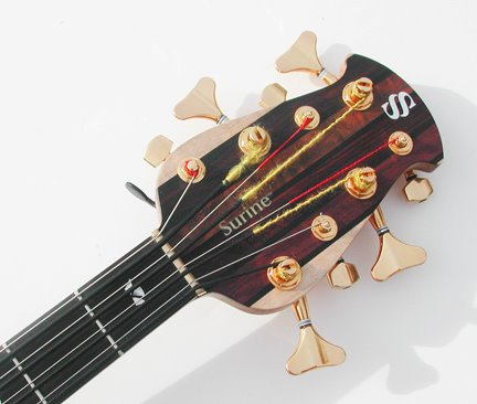 Surine Regency 8-string Rainbow Bass - headstock front