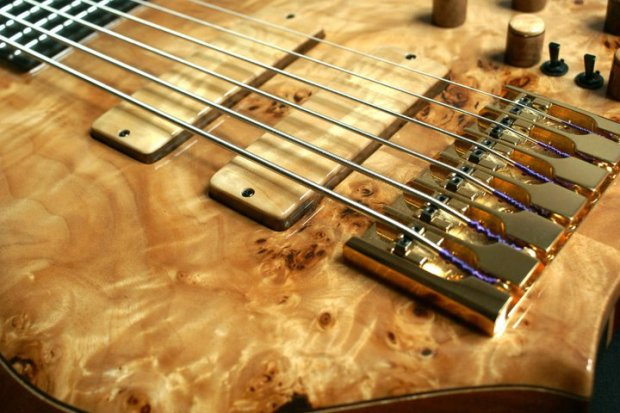 Aries Senes Bass - bridge and pickups closeup