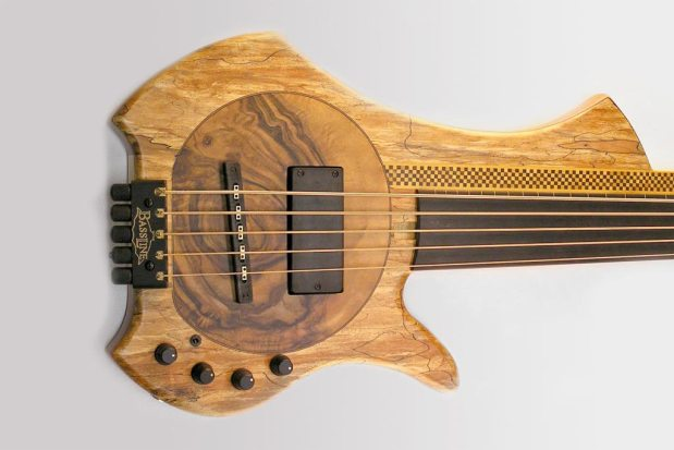 Bassline Worp Acoustic Bass - Spalted
