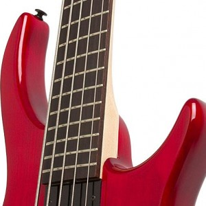 Bass Gear Round-Up: The Most Popular Gear for August 2012