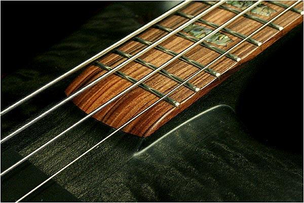 Spector NS-2 Bass - rosewood fingerboard