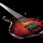 Bass of the Week: Pedulla MVP/Buzz
