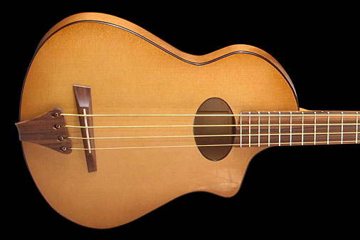 Veillette Introduces Flyer Acoustic-Electric Bass