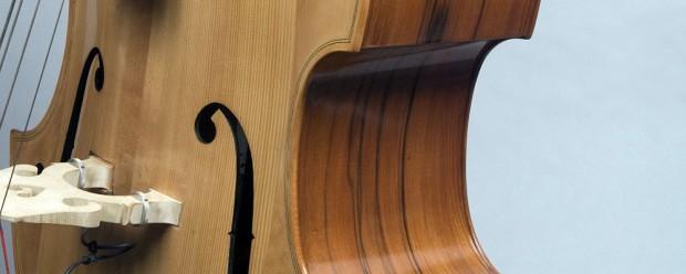 David Gage Czech-Ease Double Bass
