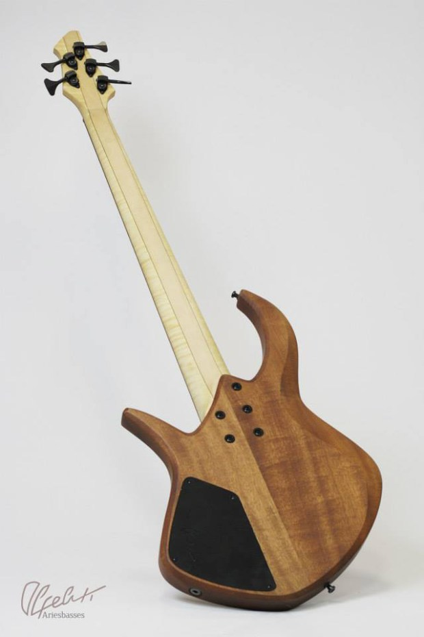 Aries Basses Alpeluti Bass back