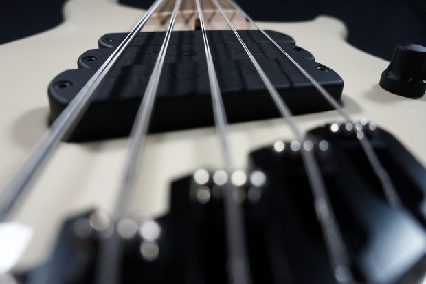 Dingwall Guitars Alberto Rigoni AR5 Bass bridge/pickups perspective