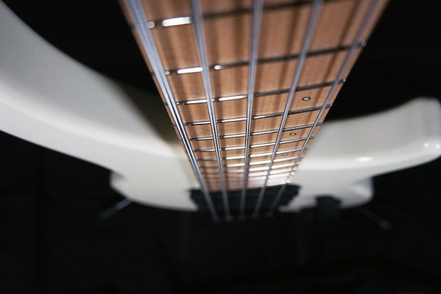 Dingwall Guitars Alberto Rigoni AR5 Bass neck perspective