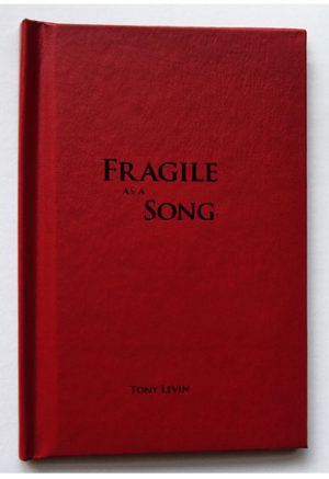 Tony Levin: Fragile as a Song