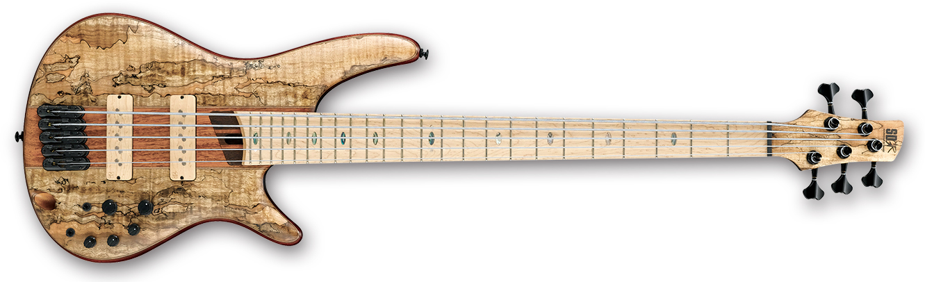 Ibanez SR5SMLTD Premium Bass